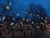 Antares exterior snowflake lights in trees