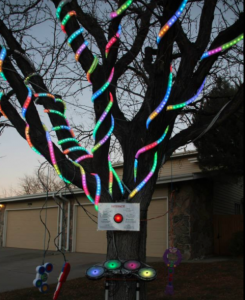 The Interactive Tree - Denver